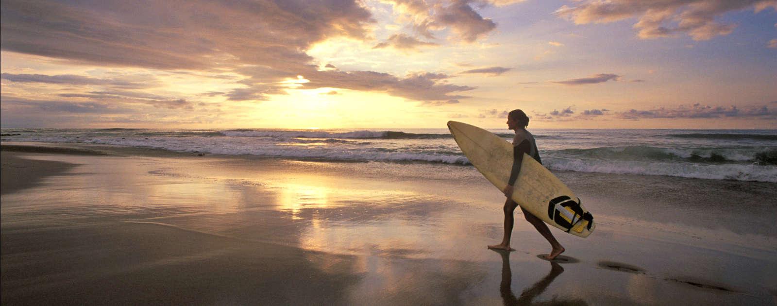 delphi-surfing